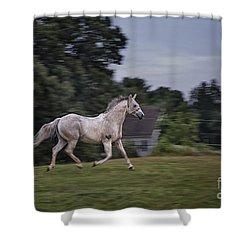 Thundersoul Shower Curtain by Evelina Kremsdorf