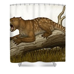 Thylacoleo Carnifex, A Marsupial Shower Curtain by Heraldo Mussolini