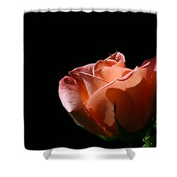 Shower Curtain featuring the photograph Tickled Coral by Doug Norkum
