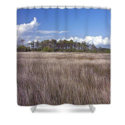 Shower Curtain featuring the photograph Tidal Marsh On Roanoke Island by Greg Reed