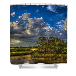 Tide Water Shower Curtain by Marvin Spates