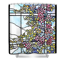 Stained Glass Tiffany Floral Skylight - Fenway Gate Shower Curtain by Donna Walsh