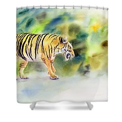 Tiger Shower Curtain by Amy Kirkpatrick