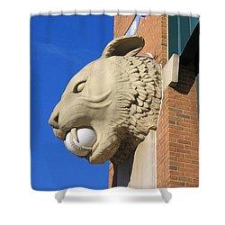 Tiger Baseball Shower Curtain by Ann Horn