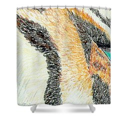 Shower Curtain featuring the drawing Tiger Blue by Stephanie Grant