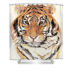 Shower Curtain featuring the drawing Tiger Bright by Stephanie Grant