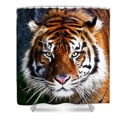 Tiger Close Up Shower Curtain