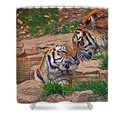 Tiger Kiss Shower Curtain by David Rucker