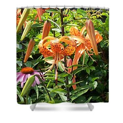 Tiger Lilies Shower Curtain by Catherine Gagne