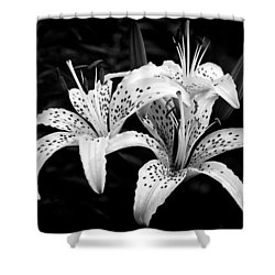Tiger Lily I Shower Curtain by Jeff Burton