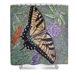 Tiger Swallowtail Butterfly Shower Curtain by Kathy Marrs Chandler