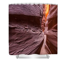 Tight Squeeze Shower Curtain by Dustin  LeFevre