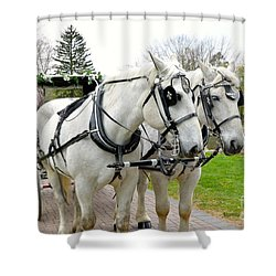 Tillie And Bruce Shower Curtain