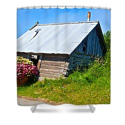 Tilted Shed In Old Town Kenai-ak Shower Curtain by Ruth Hager