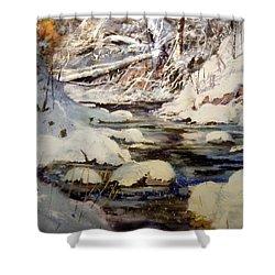 Timber Creek Winter Shower Curtain by Joseph Barani