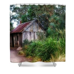 Timber Shack Shower Curtain by Kaye Menner
