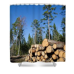 Timber Stack Of Whitewood Shower Curtain