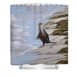 Time For A Bath Shower Curtain by Bill Cannon
