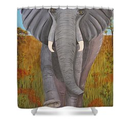 Time To Move Shower Curtain by Tim Townsend