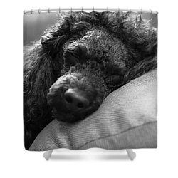 Time To Sleep Shower Curtain