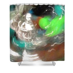 Shower Curtain featuring the photograph Time Traveler by Mike Breau