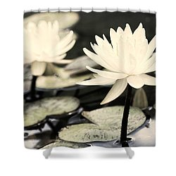 Shower Curtain featuring the photograph Timeless by Lauren Radke