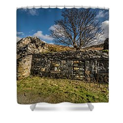 Times Past Shower Curtain by Adrian Evans