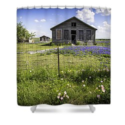 Times Past Shower Curtain