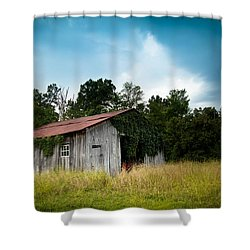 Tin Roof...ivy Covered Barn Shower Curtain by Shane Holsclaw