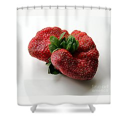 Shower Curtain featuring the photograph Tina's Strawberry by PJ Boylan