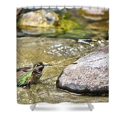 Tiny Bather Shower Curtain