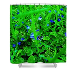Shower Curtain featuring the photograph Tiny Butterfly by Sherman Perry