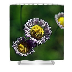 Tiny Little Weed Shower Curtain