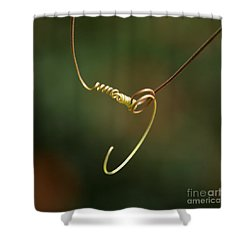 Tiny Spiral Curl Shower Curtain by Sabrina L Ryan