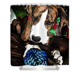 Shower Curtain featuring the photograph 'tis Better To Receive by Robert McCubbin