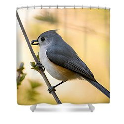 Titmouse In Gold Shower Curtain