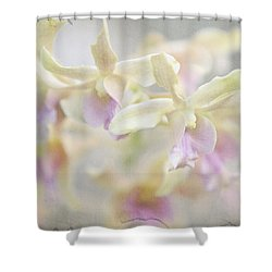 To Dream A Dream Shower Curtain by Jenny Rainbow