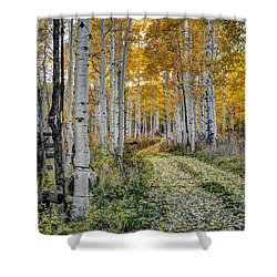 To Grandmother's House Shower Curtain by George Buxbaum