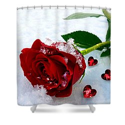 To Make You Feel My Love Shower Curtain