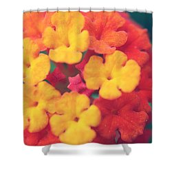 To Make You Happy Shower Curtain