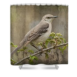 To Still A Mockingbird Shower Curtain