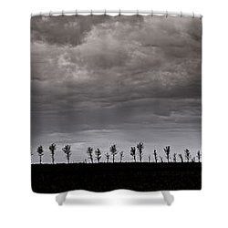 Together We Shall Stand Shower Curtain