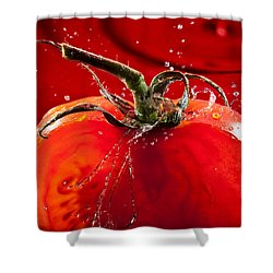 Tomato Freshsplash 2 Shower Curtain by Steve Gadomski