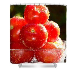 Tomatoes 2 Shower Curtain by Sabine Jacobs