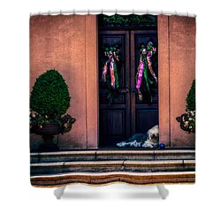 Too Hot To Fetch Shower Curtain by Melinda Ledsome
