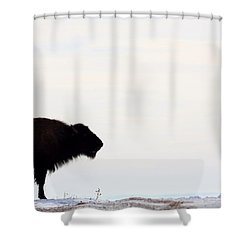 Top Of The Ridge Shower Curtain