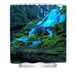Top Part Of Clearwater Falls Shower Curtain by Teri Schuster