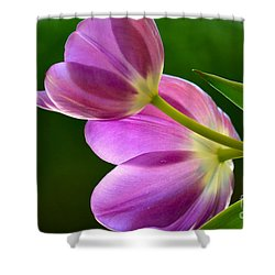 Topsy-turvy Tulips Shower Curtain