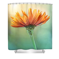 Torch Song Shower Curtain by Amy Tyler