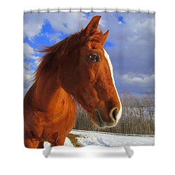 Tori Girl Shower Curtain